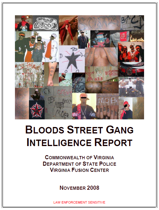 Virginia Fusion Center Bloods Street Gang Intelligence Report
