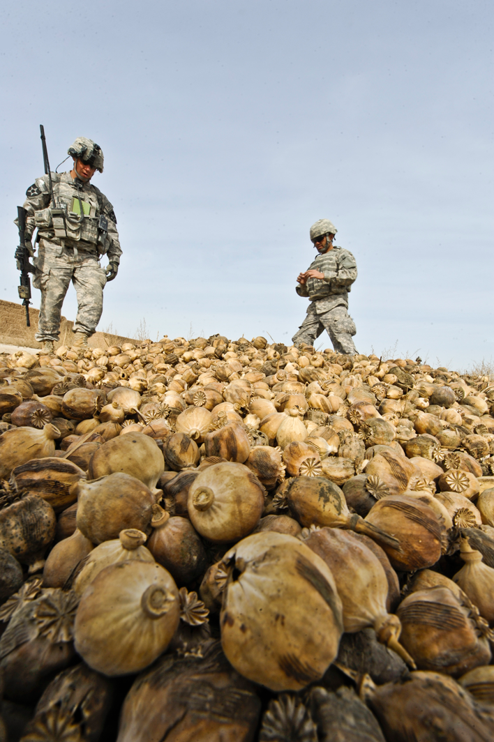 USopium1 U.S. Troops Patrolling Poppy Fields In Afghanistan (Photos)