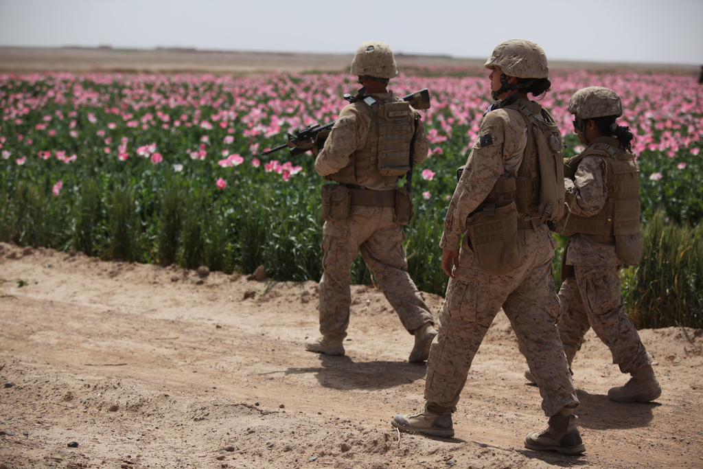 USopium7 U.S. Troops Patrolling Poppy Fields In Afghanistan (Photos)