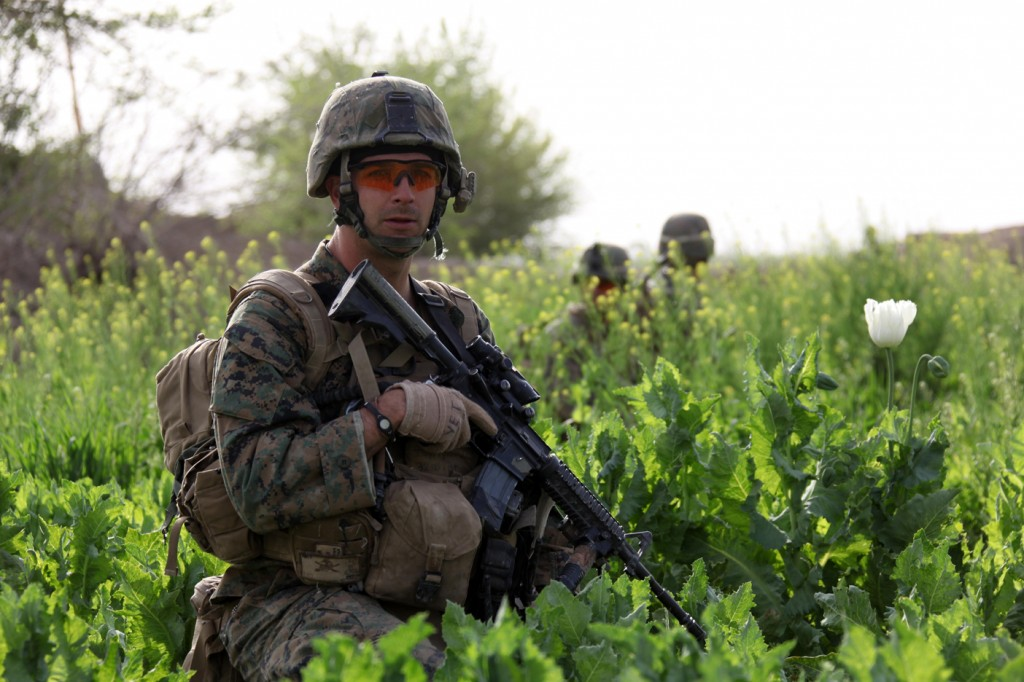 U.S. Troops Patrolling Poppy Fields In Afghanistan (Photos)