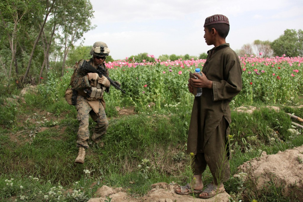 USNATO poppies15 1024x683 U.S. Troops Patrolling Poppy Fields In Afghanistan (Photos)