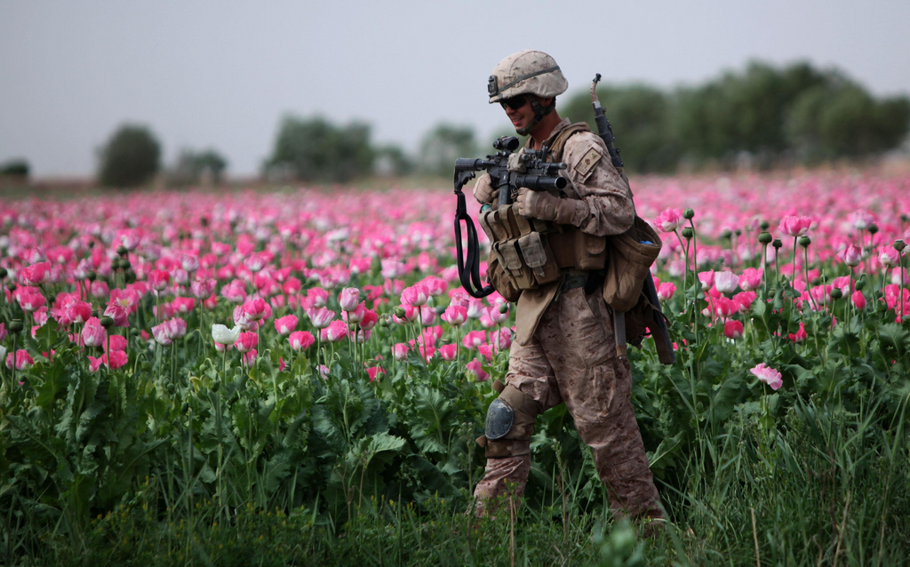 USNATO poppies18 U.S. Troops Patrolling Poppy Fields In Afghanistan (Photos)