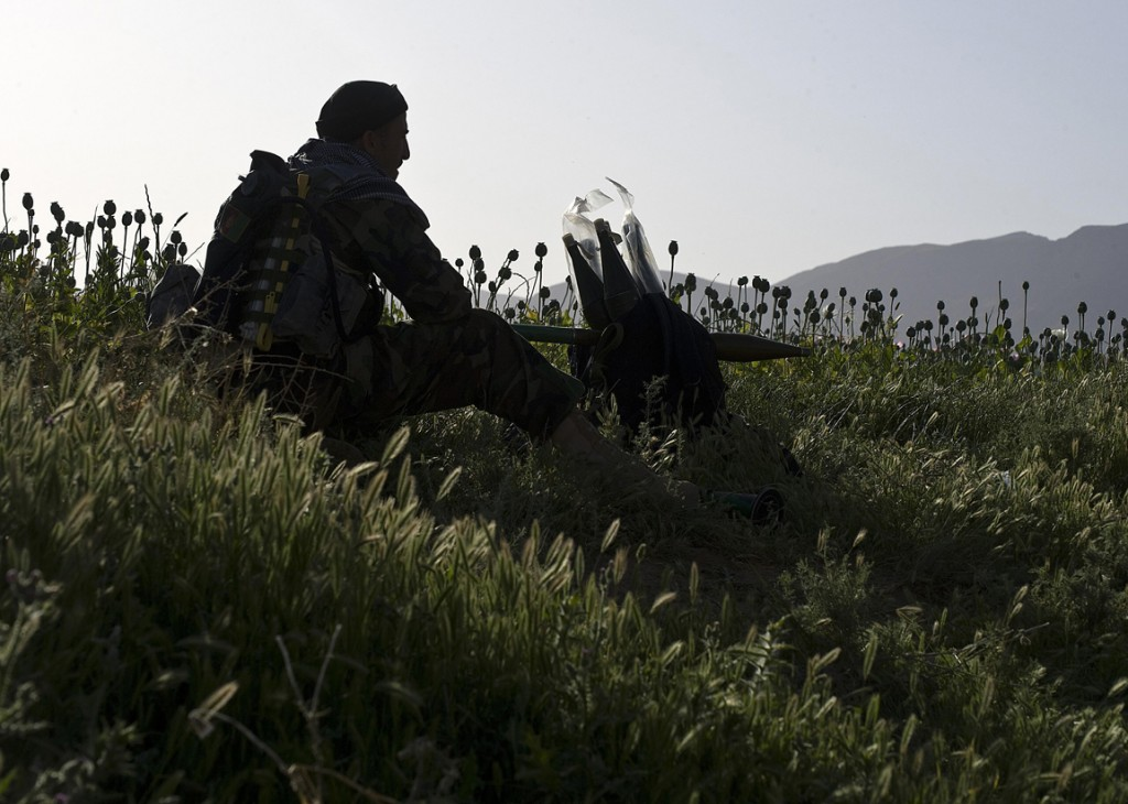opium fields12 1024x730 U.S. Troops Patrolling Poppy Fields In Afghanistan (Photos)