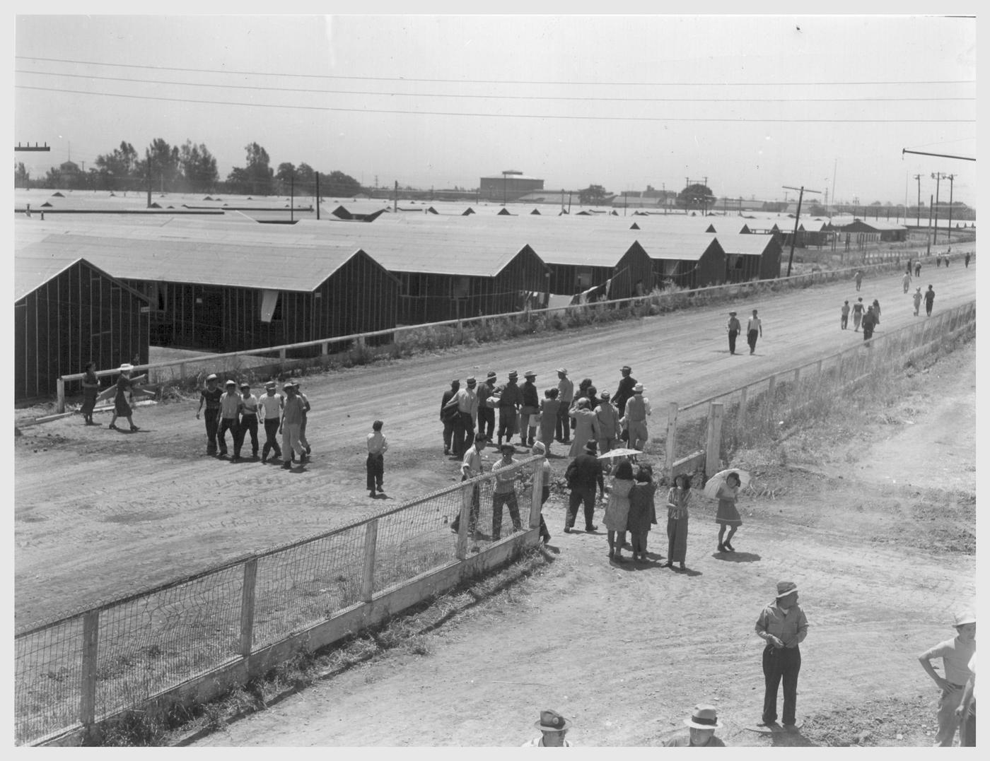 a look at the japanese internment Japanese internment camps were established during world war ii by president  franklin d  get the facts about japanese internment and executive order 9066  on historycom  but if you see something that doesn't look right, contact us.