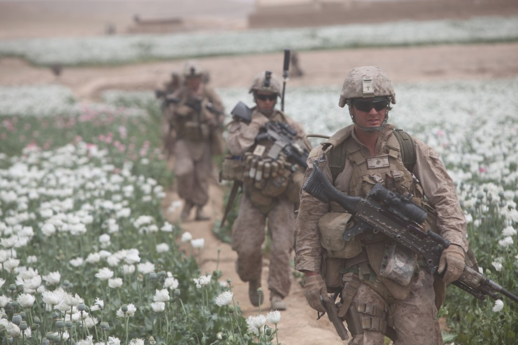 opium fields 4 1024x682 U.S. Troops Patrolling Poppy Fields In Afghanistan (Photos)