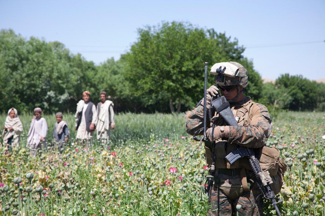 Drug War? American Troops Are Protecting Afghan Opium  U S