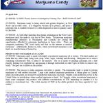 NJROIC-MarijuanaCandy